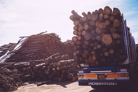 Logs for delivery Cheshire