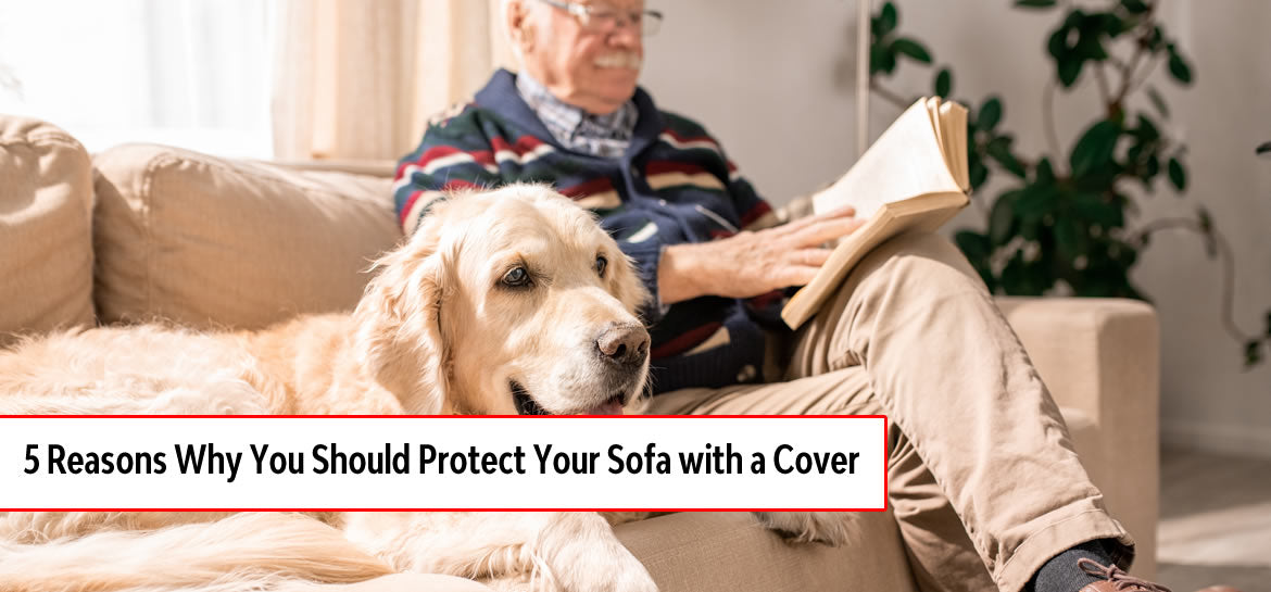 5 Reasons Why You Should Protect Your Sofa with a Cover