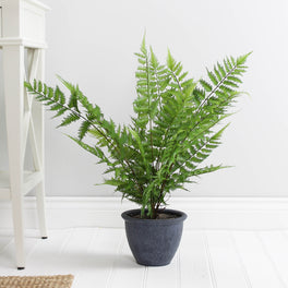 Faux Green Fern Plant In Grey Pot