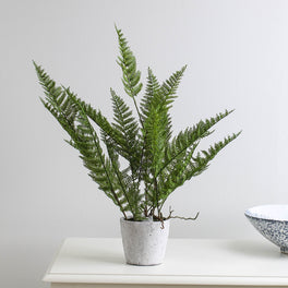 Faux Green Mountain Fern In Cement Pot