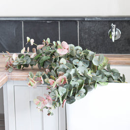 Large Blush Eucalyptus Spray 100cm