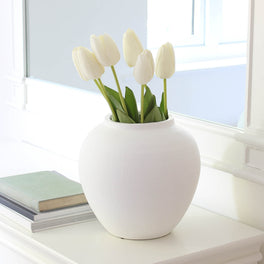 White Tulip Stem
