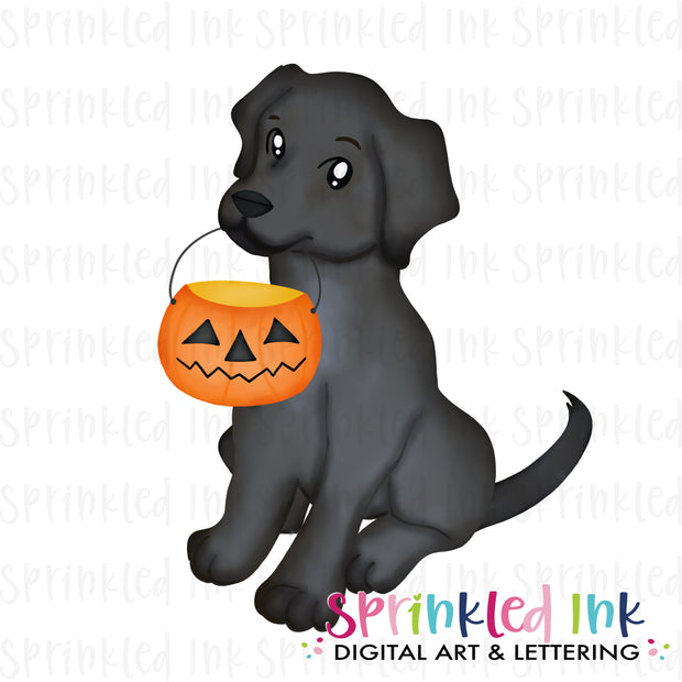 Watercolor PNG Halloween Candy Pail Black Lab Digital Download File