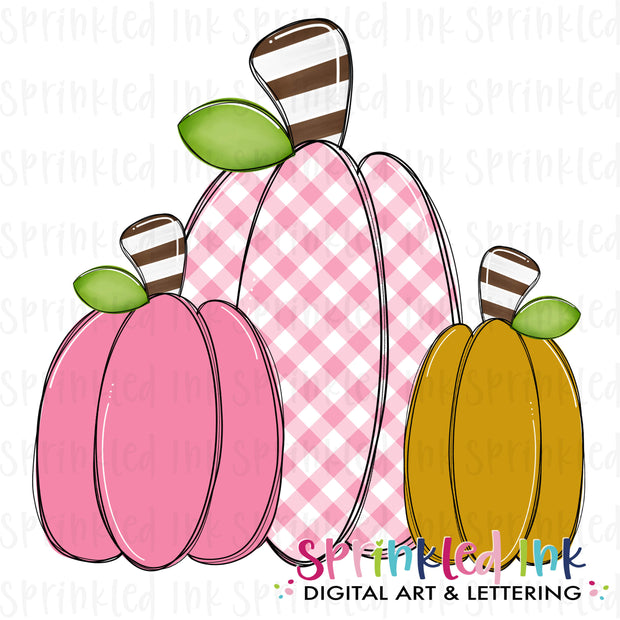 Watercolor PNG Fall Squishy Pumpkin Trio |Pink Gingham| Digital Download File