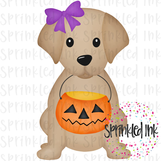 Watercolor PNG Halloween Candy Pail Sitting Lab Puppy With Purple Bow Digital Download File - Sprinkled Ink Digital Designs