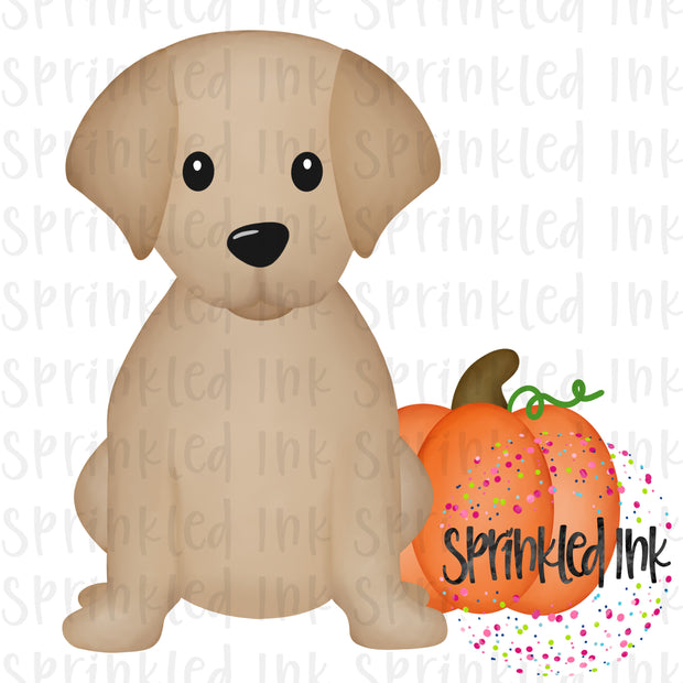 Watercolor PNG Fall Pumpkin Sitting Lab Puppy Digital Download File - Sprinkled Ink Digital Designs