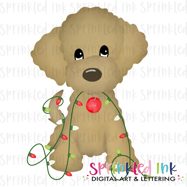 Watercolor PNG Golden Doodle with Christmas Lights Download File - Sprinkled Ink Digital Designs
