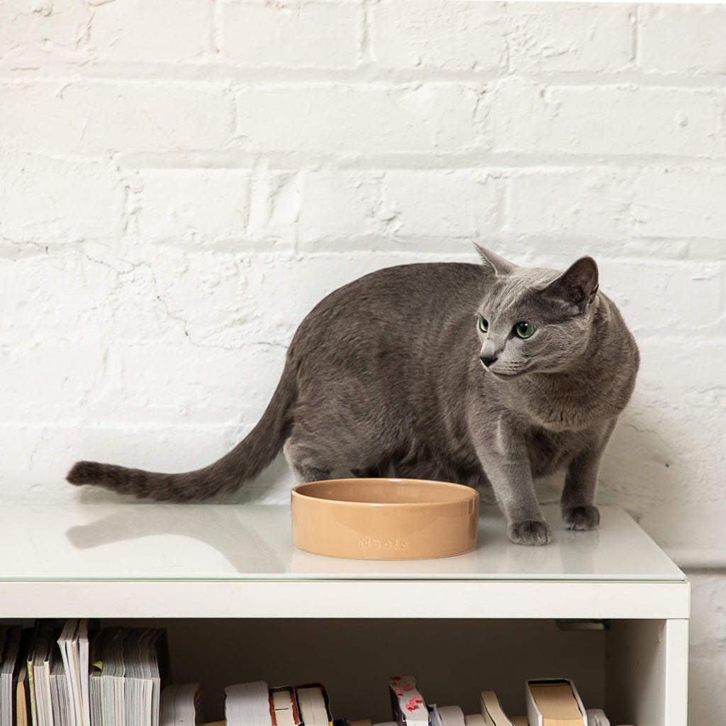 Noots Zoe Modern Cat Bowl