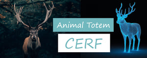 animal totem cerf | Passion Attrape Reve