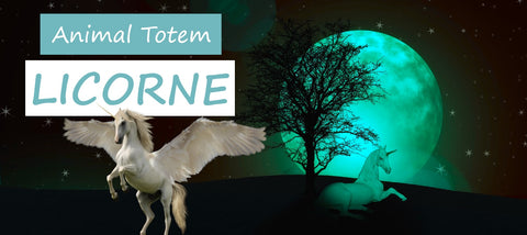 animal totem licorne | Passion Attrape Reve