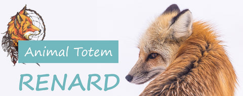 animal totem renard | Passion Attrape Reve