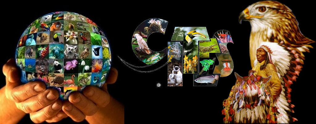 CITES protection animale