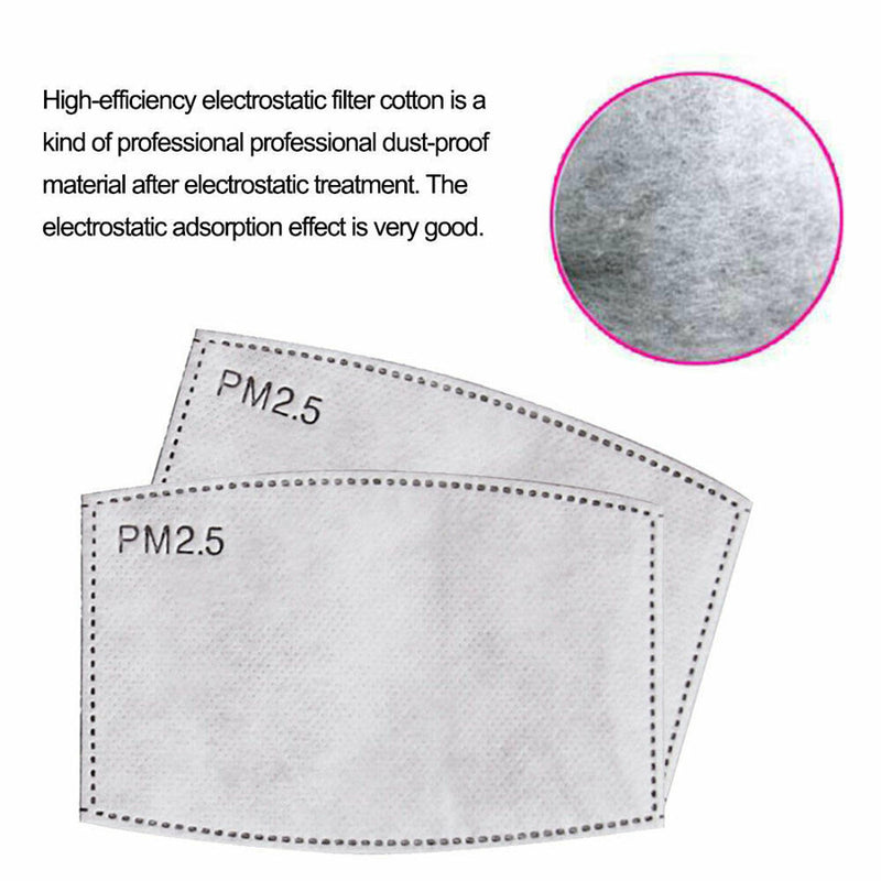 Cotton Cloth insertable PM2.5 Filter Mask