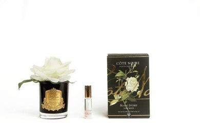 Cote Noire Perfumed Natural Touch Single Rose - Black Glass-Gold Crest - Ivory White - GMRB01 Cote Noire
