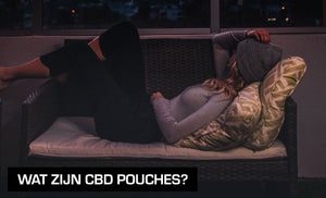 What are CBD pouches?
