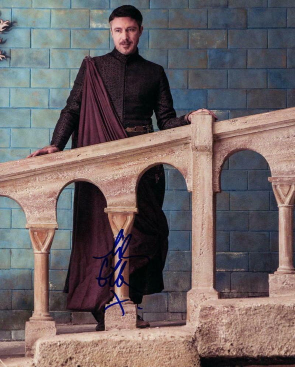 Aidan Gillen Authentic Autographed 8x10 Photo - Prime Time Signatures - TV & Film