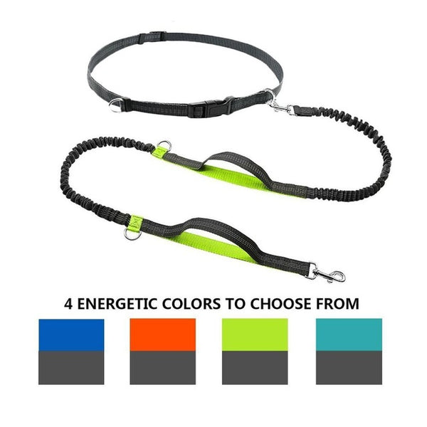 Hands Free Running Leash Shock Absorbing Reflector