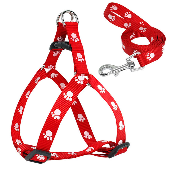 Harness and Leash Vest