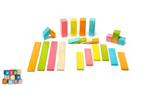 24-PIECE TEGU BLOCKS