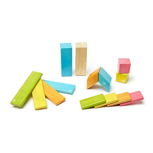 14-PIECE TEGU BLOCKS
