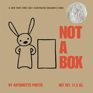 NOT A BOX - board book