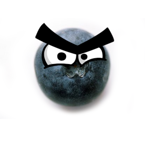 Bad Ass Blueberry