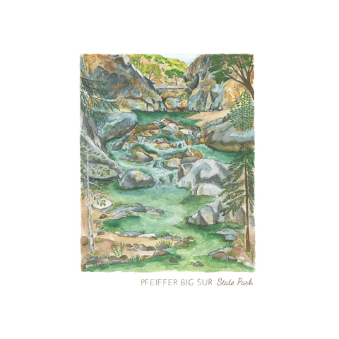 Big Sur Pfeiffer State Park Art Print