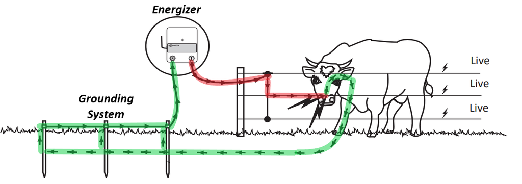 Outstanding Electric Fencing Basics Gallagher Fence Basic Electronics Wiring Wiring Cloud Hisonuggs Outletorg
