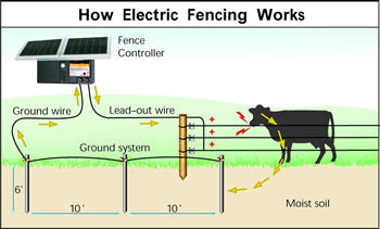 Electric Fence Wire Hot Strand