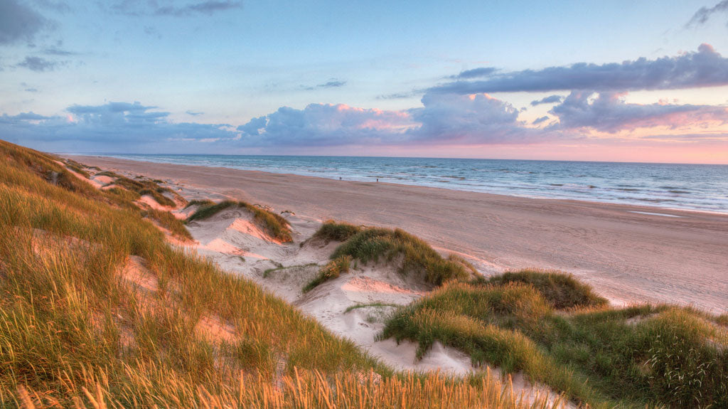 Rolling Sand Dunes Outer Banks NC