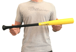 The Swing Mechanic FAD One Arm Training Bat