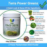 Terra Power Greens - A Power Packed Green Drink Powder