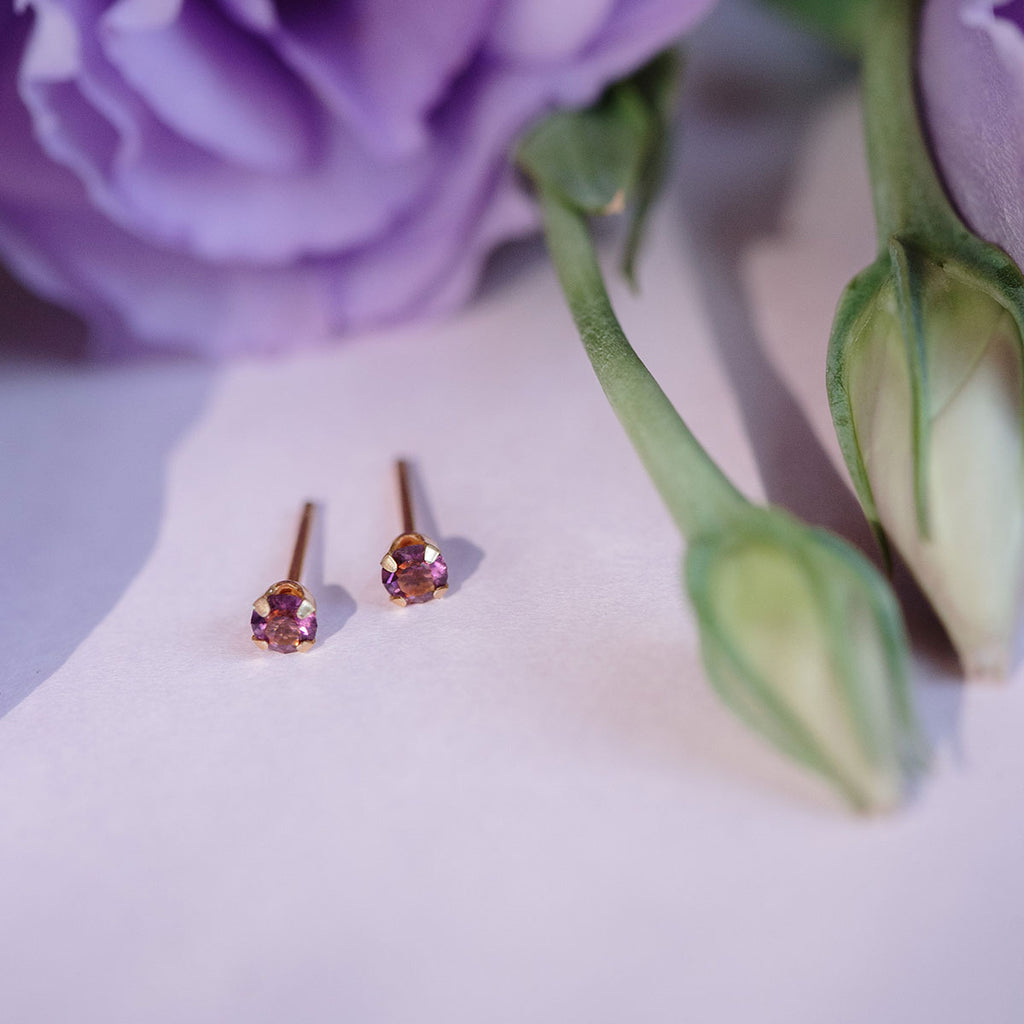 February Birthstone Gold Plated Stud Earrings