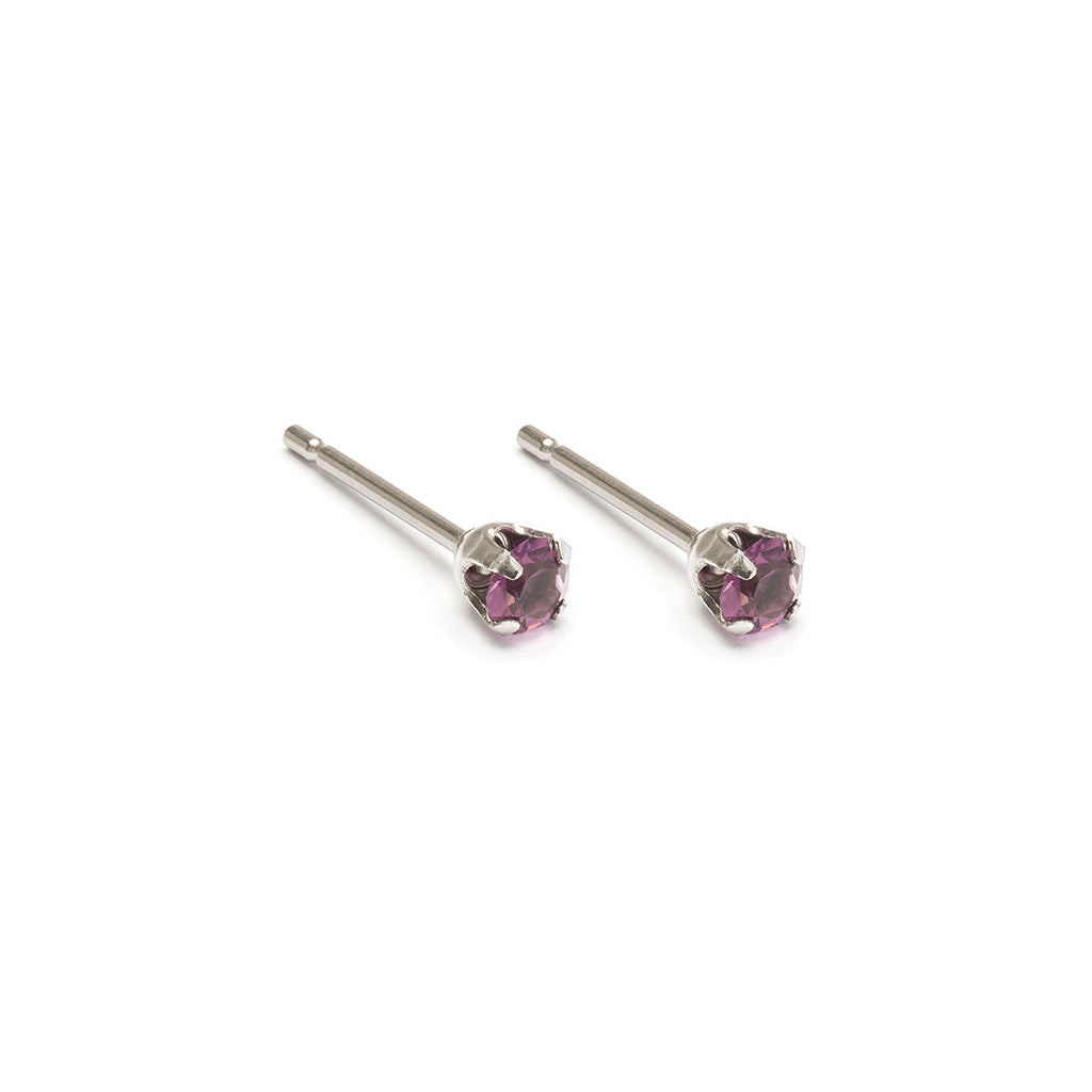 February Birthstone Stainless Steel Stud Earrings
