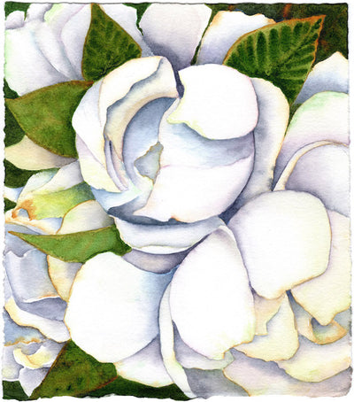 Fresh Start Gardenia by Patrice Federspiel