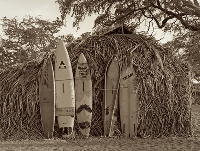 Surf Shack by Cathy Shine
