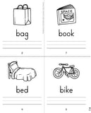 Reading Success Mini-Books: Initial Consonants