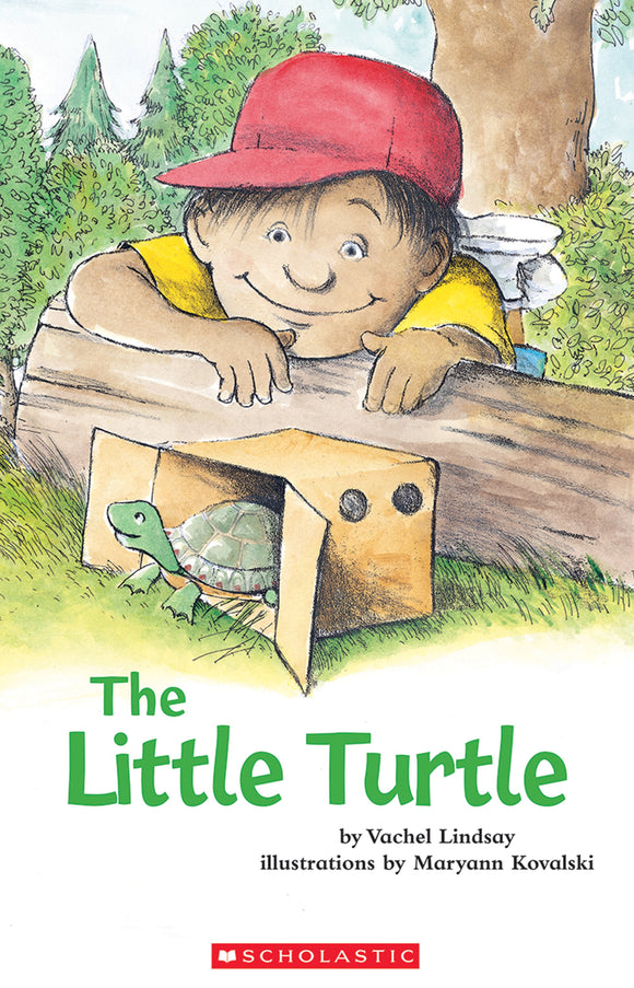 The Little Turtle Shared Reading Pack (4708946935904)