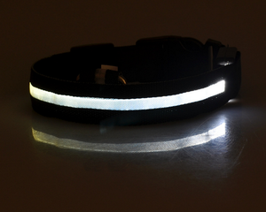 LED Pet Collar - store4homes