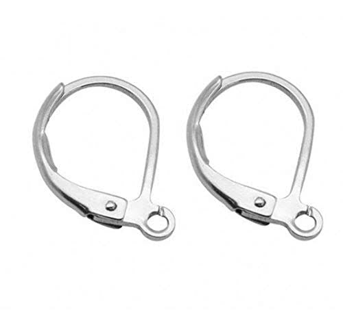 Leverback Earring Hook |3 colors|