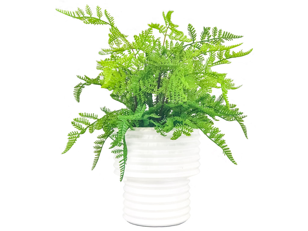 Fern Snow Planter
