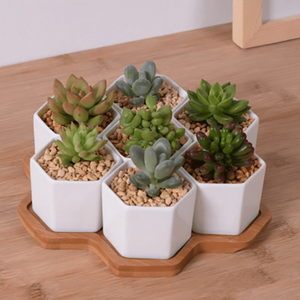 Hexagon Flowerpots White Ceramic Succulent Plant Pot with Bamboo Stand aplanter