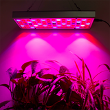Plant Growing Lamps LED Grow Light aplanter