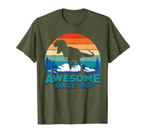 Awesome Since 1987 T-Shirt 32 Years Old Dinosaur Gift