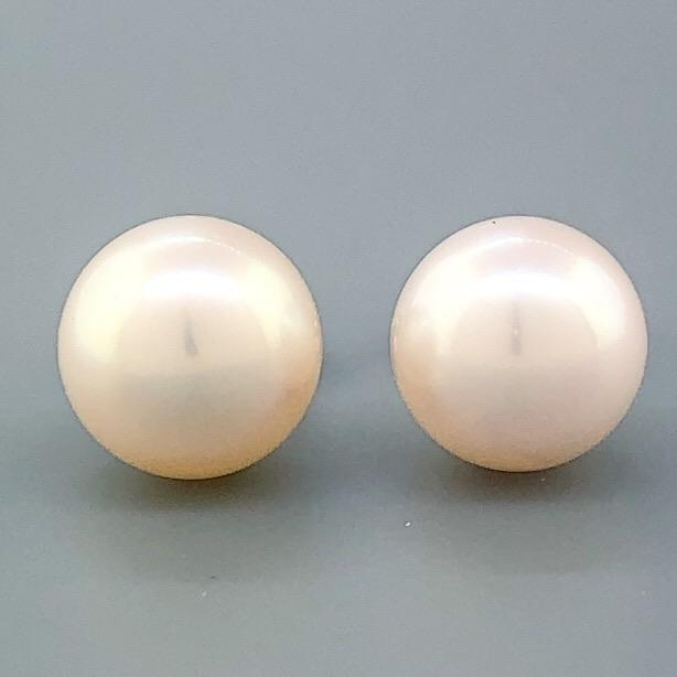 14K WG 7.00-7.50mm Pearl Stud Earrings - Walter Bauman Jewelers