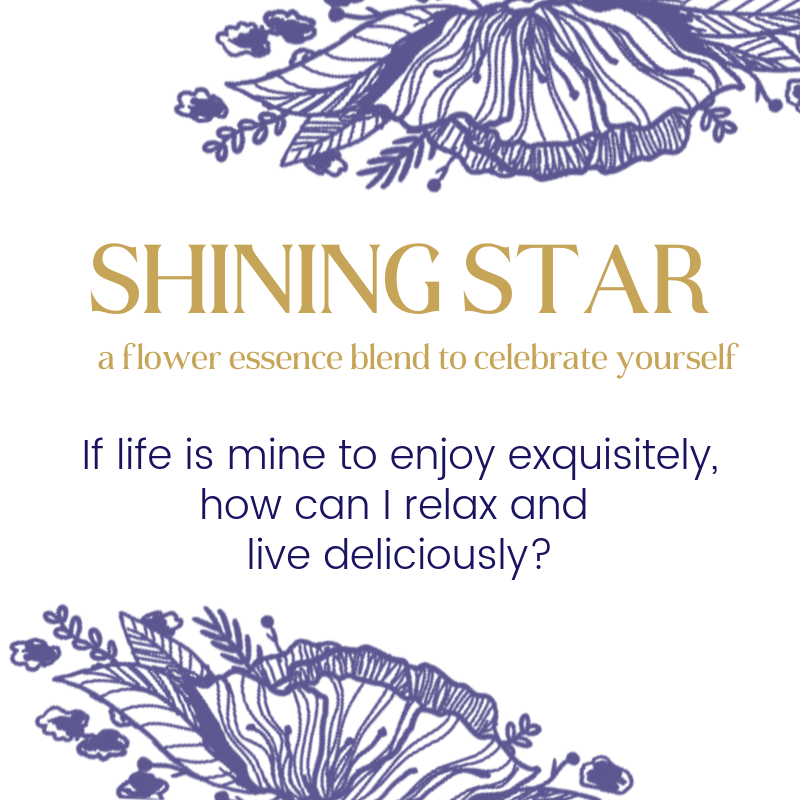 Shining Star™ | Insecurity
