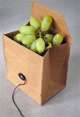 Lunchbag Fruit