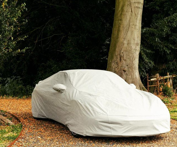 Lotus Outdoor Car Cover