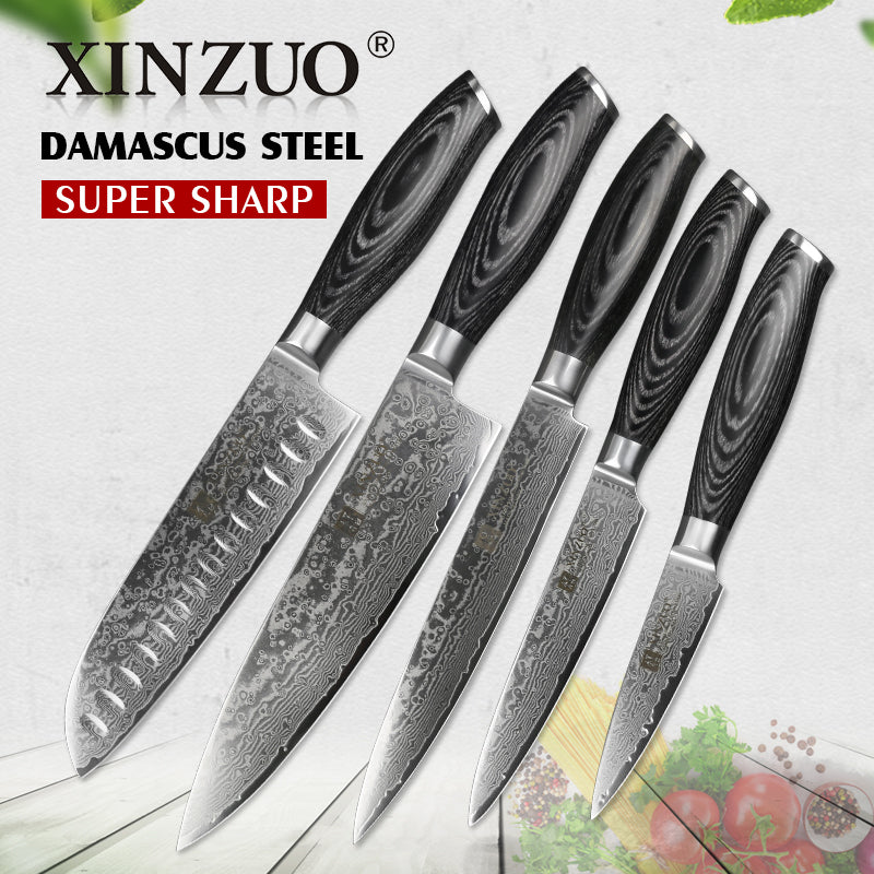 XINZUO 5Pcs Kitchen Knives Set 67 layer Japanese VG10 Damascus Steel Chef Cleaver Santoku Utility Paring Knife Pakka Wood Handle