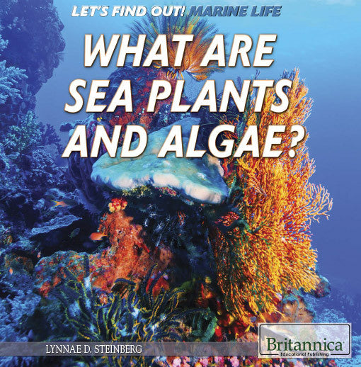 What Are Sea Plants and Algae?